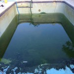 Lakeland Swimming Pool Drain and Clean